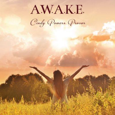 Awake Product Image